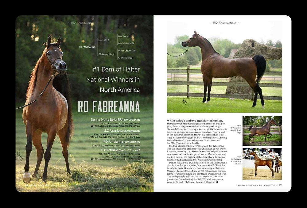 Canadian Arabian Horse News